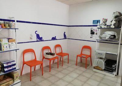 Sala de espera para gatos